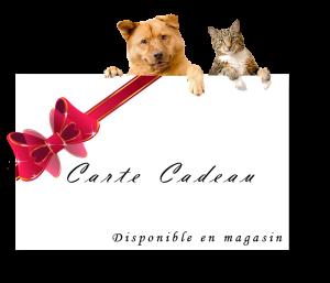 carteCadeau